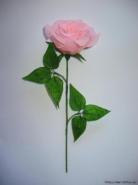 Очень красивые розы из гофрированной бумаги (30) (525x700, 164Kb)