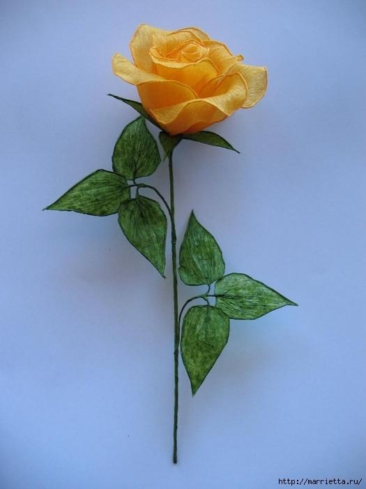 Очень красивые розы из гофрированной бумаги (33) (525x700, 197Kb)