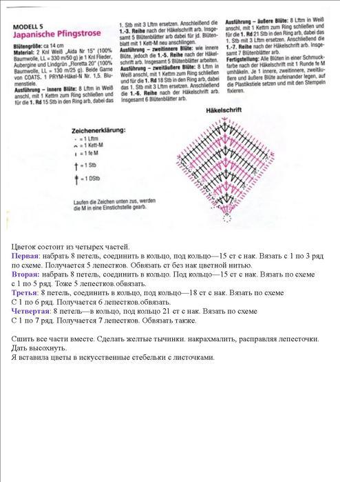 розы-схема (494x700, 52Kb)