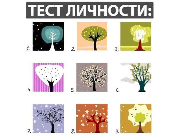 Не задумываясь, выберете дерево, которое - Отношения - Tatyana Tumanova - HAPPLINK - интересное место.