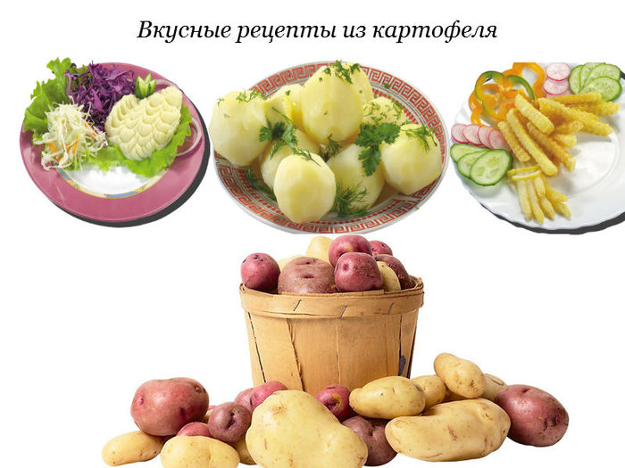 4278666_recepti_iz_kartofelya (700x525, 71Kb)