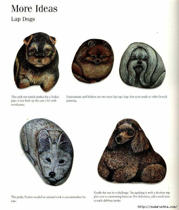painting pets on rocks table 124 (597x700, 219Kb)