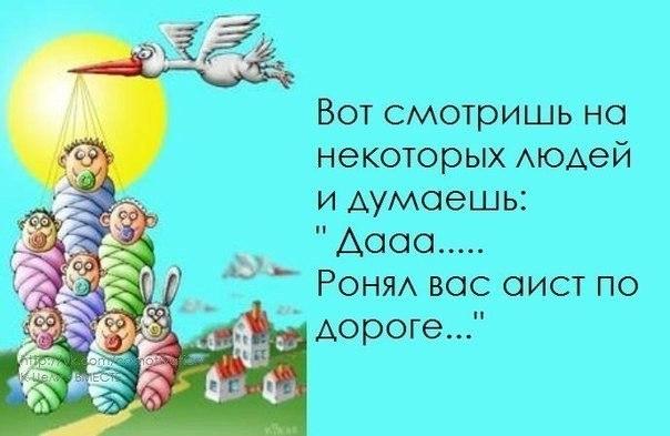 102525260_large_1372616395_frazochki14.j