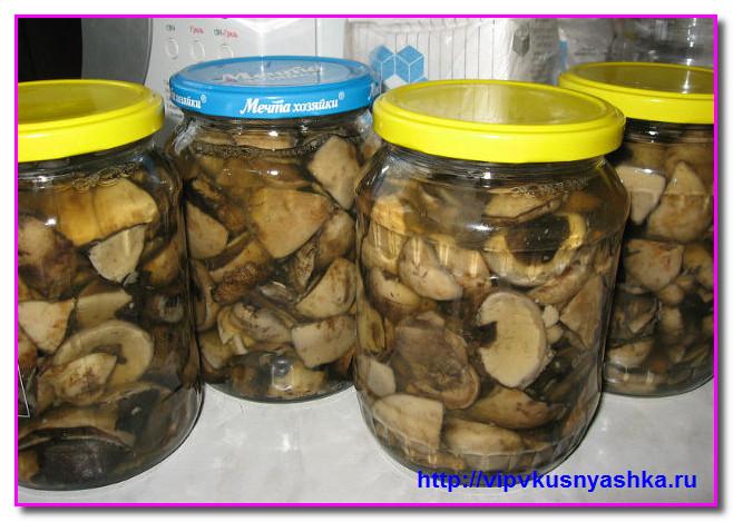 Рецепт соления черных груздей на зиму 5