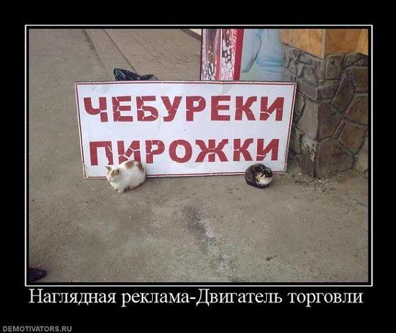 5247919_siryo (570x480, 45Kb)