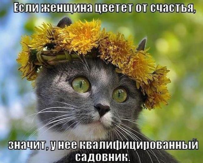 smeshnie_kartinki_1369042857200520131764 (650x524, 292Kb)