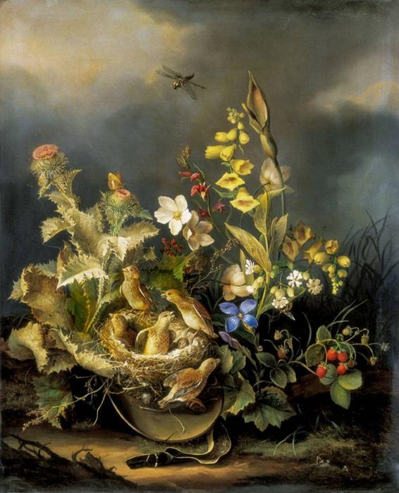 Флора и фауна (566x700, 426Kb)