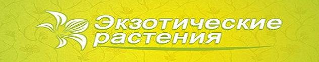 logo[1] (632x123, 91Kb)