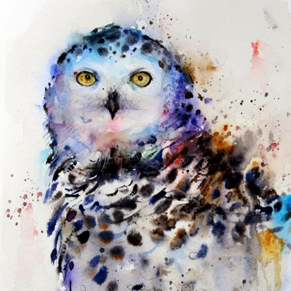 Dean Crouser картины животных акварелью 7 (600x600, 226Kb)