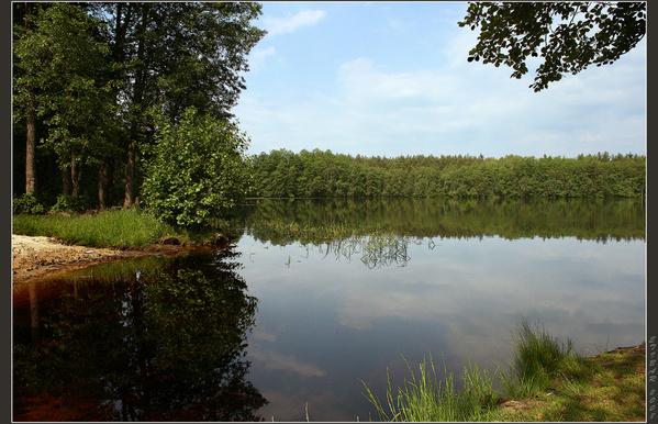 лесное озеро 11 (599x386, 309Kb)