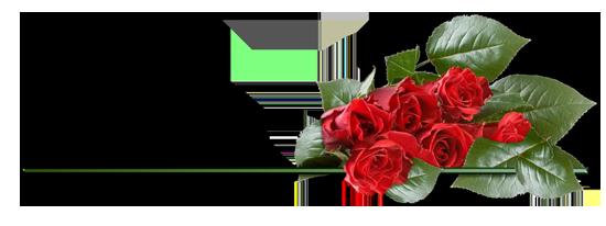 роза (550x206, 89Kb)