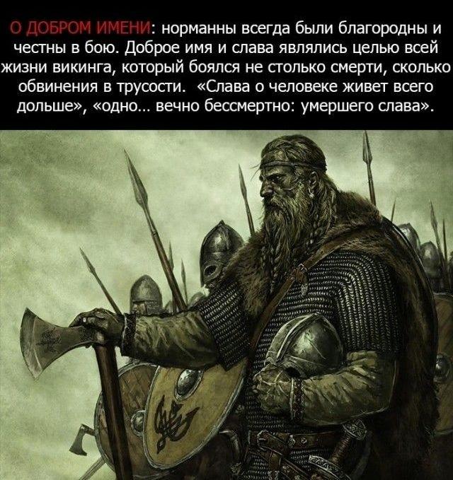 viking_0001 (640x679, 236Kb)