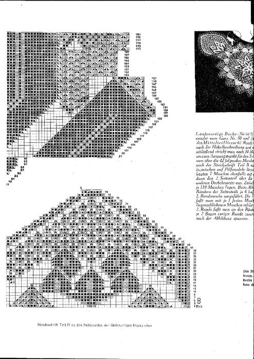 Schwertlilie 4 (494x700, 200Kb)