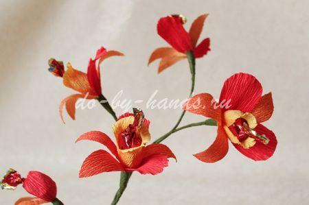 orhideya-iz-konfet18 (450x299, 34Kb)