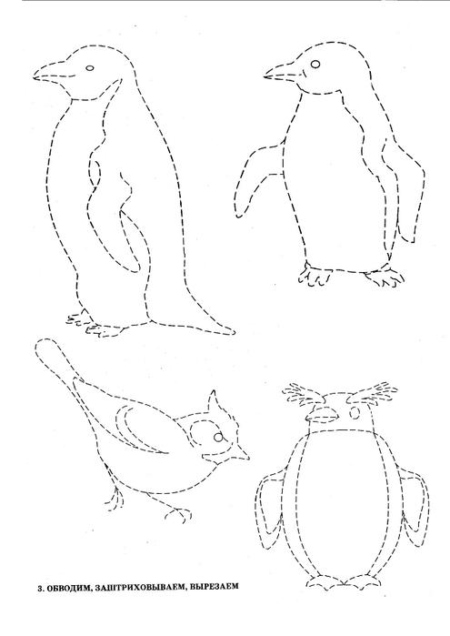 ptici-5 - копия (495x700, 78Kb)