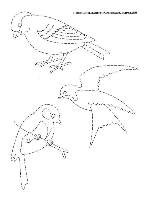 ptici-7 (495x700, 72Kb)