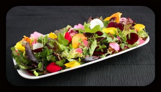 1373053262_salat-iz-cvetov (538x310, 64Kb)
