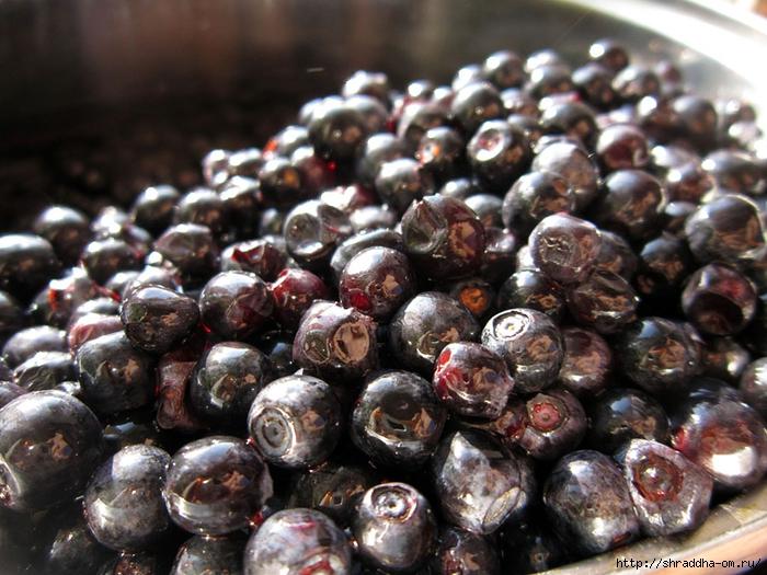 ягодки (1) (700x525, 320Kb)