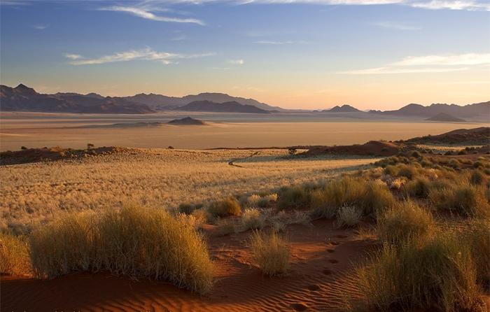 пустыня Намиб 11 (700x446, 304Kb)