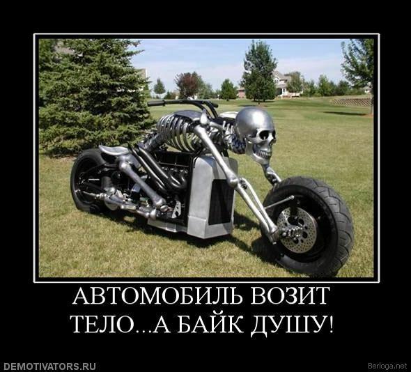 berloga.net_785832407 (590x534, 132Kb)