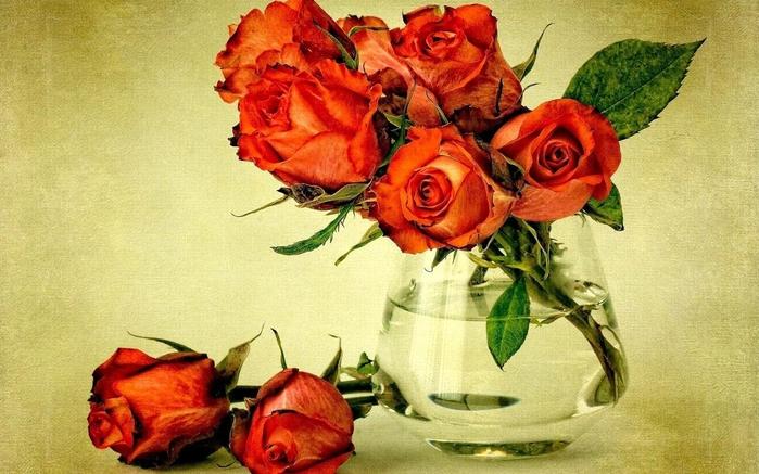 Цветы в вазе фото картинки 3