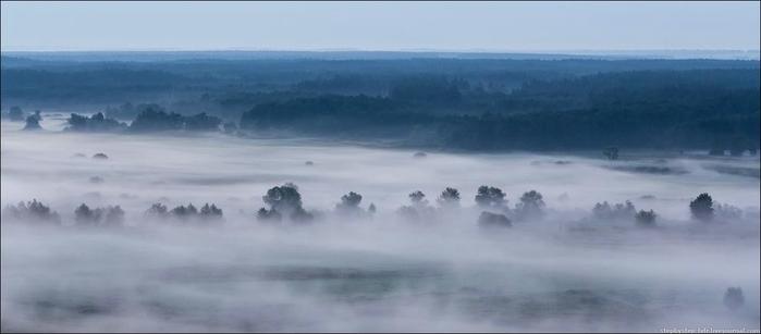 fog03 (700x307, 97Kb)
