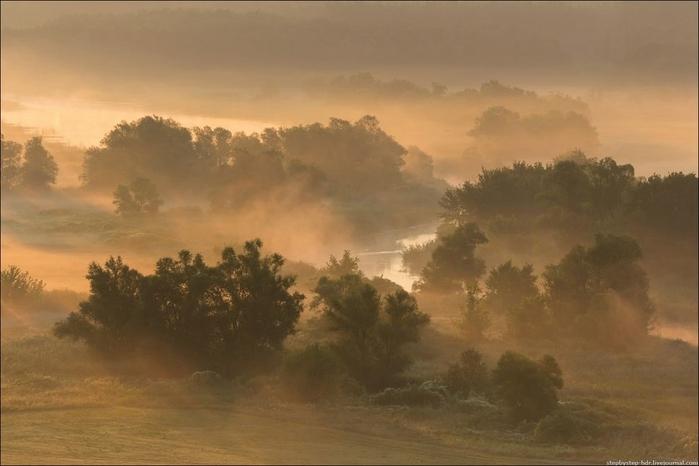 fog17 (700x466, 172Kb)