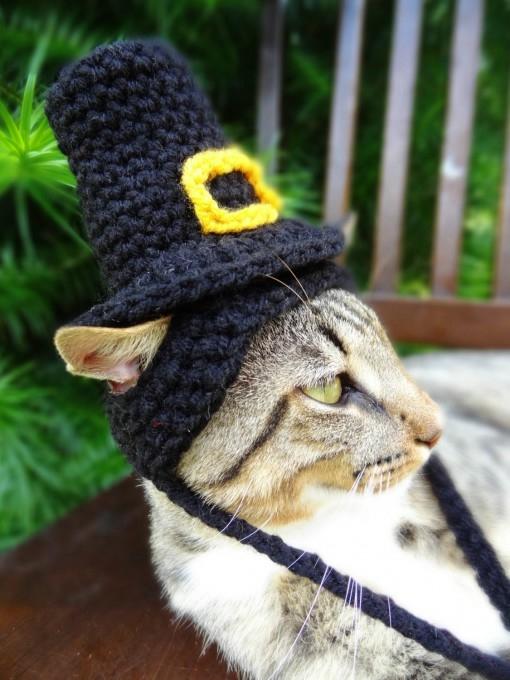 одежда для кошек фото 9 (510x680, 170Kb)