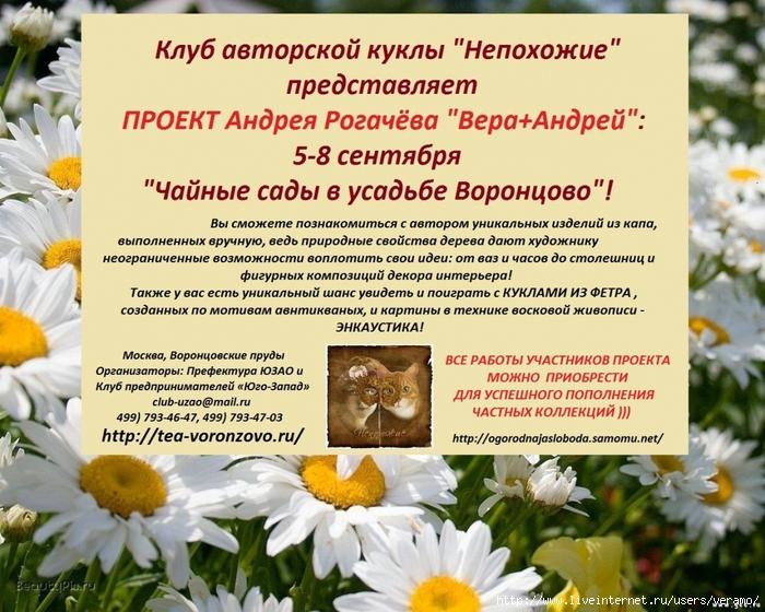 3846346_Andrei_Rogachyov (700x560, 356Kb)