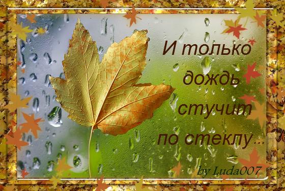 3427527_I_tolko_dojd_stychit_po_stekly__ (560x376, 601Kb)