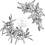 Превью 13728628-lilies-set-of-two-black-and-white-illustrations (391x400, 90Kb)