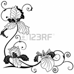 Превью 17894975-vector-background-with-flowers-of-irises-for-corner-design-in-black-and-white (450x450, 123Kb)
