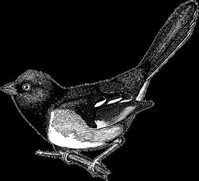 free vintage digi stamp_cute bird (400x364, 127Kb)