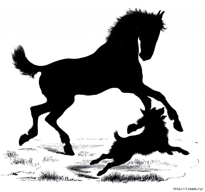Horse-Dog-Silhouette-Images-GraphicsFairy-1024x959 (700x655, 152Kb)