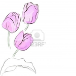 Превью 9179323-tulips-vector-greeting-card (400x400, 49Kb)