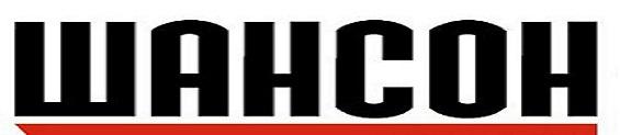 radio_shanson_logo_2012[1] (565x123, 34Kb)