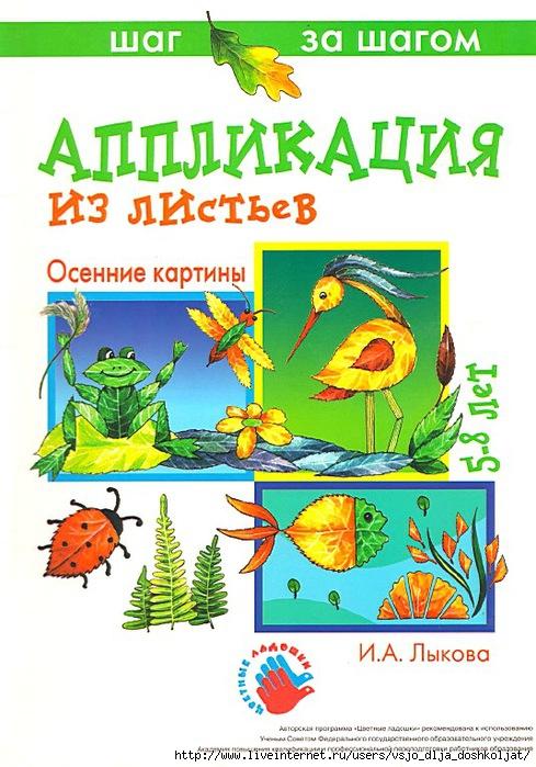 5111852_oblojka_knigi_1_ (489x700, 249Kb)