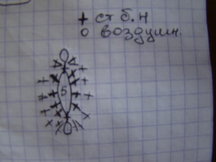 DSC02635 (700x525, 170Kb)