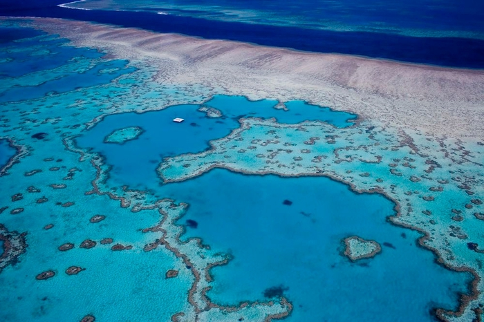 great_barrier_reef_2 (700x466, 260Kb)