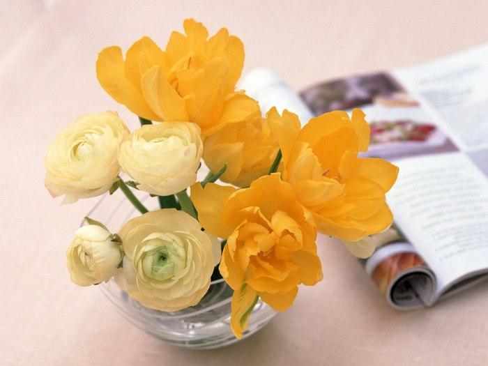 цветы в чашке 2 (700x525, 224Kb)