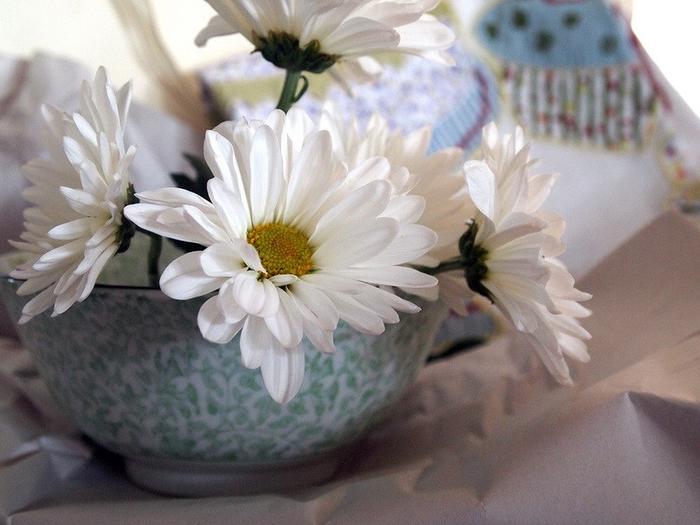 цветы в чашке 10 (700x525, 338Kb)