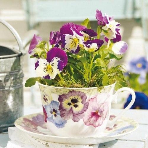 цветы в чашке 14 (500x500, 213Kb)