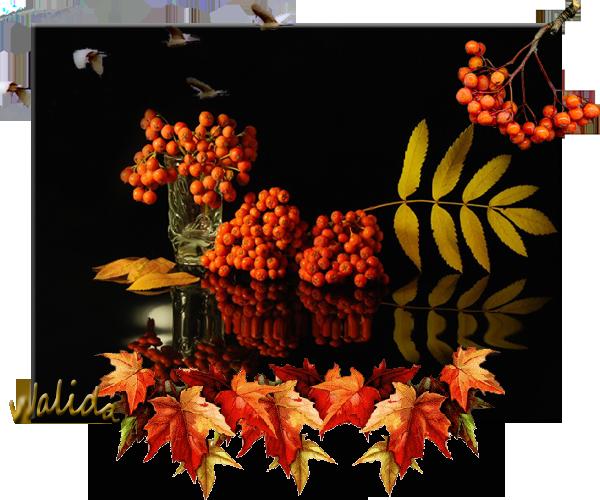 осень (600x500, 311Kb)