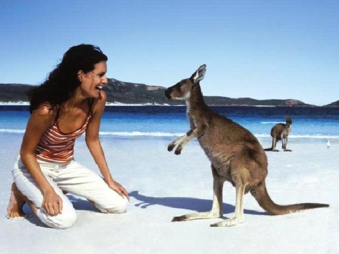 avstraliya-turizm (700x525, 38Kb)