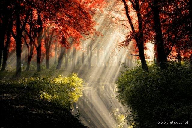 Sun_rays_001 (640x426, 182Kb)