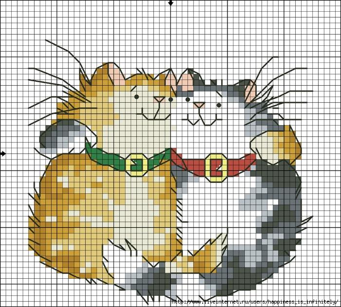 Кот гороскоп Близнецы (700x630