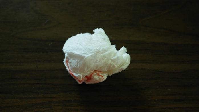 Букет тюльпанов из гофрированной бумаги. Фото мастер-класс (2) (700x393, 122Kb)