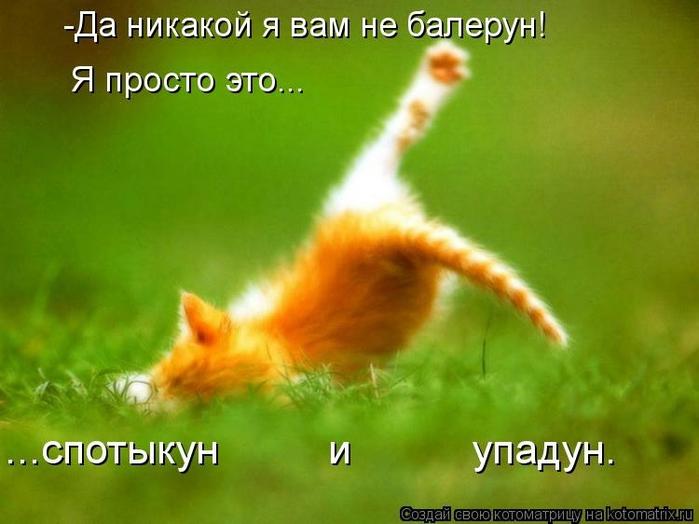 kotomatritsa_K (700x524, 198Kb)