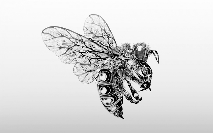 4497417_bee (700x437, 102Kb)