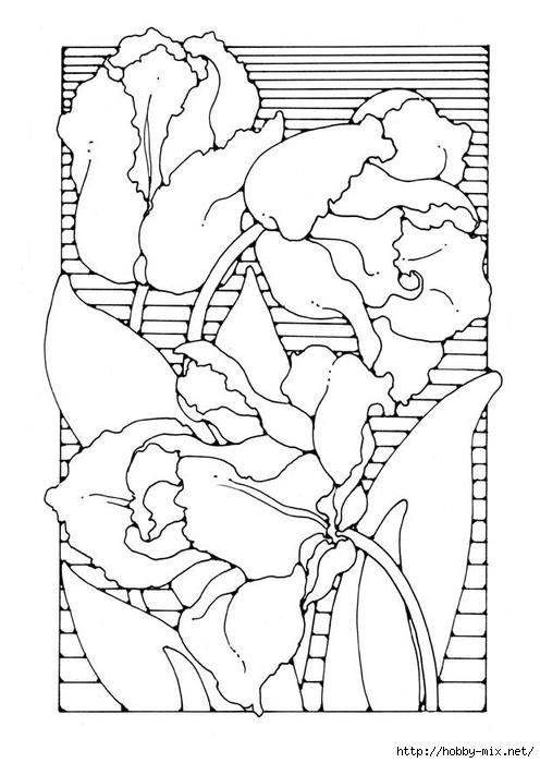 tulips-27777 (496x700, 172Kb)